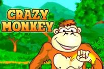 Crazy Monkey в казино Супер Слотс